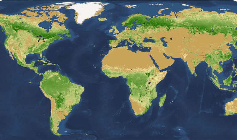 World Map of Tree Density