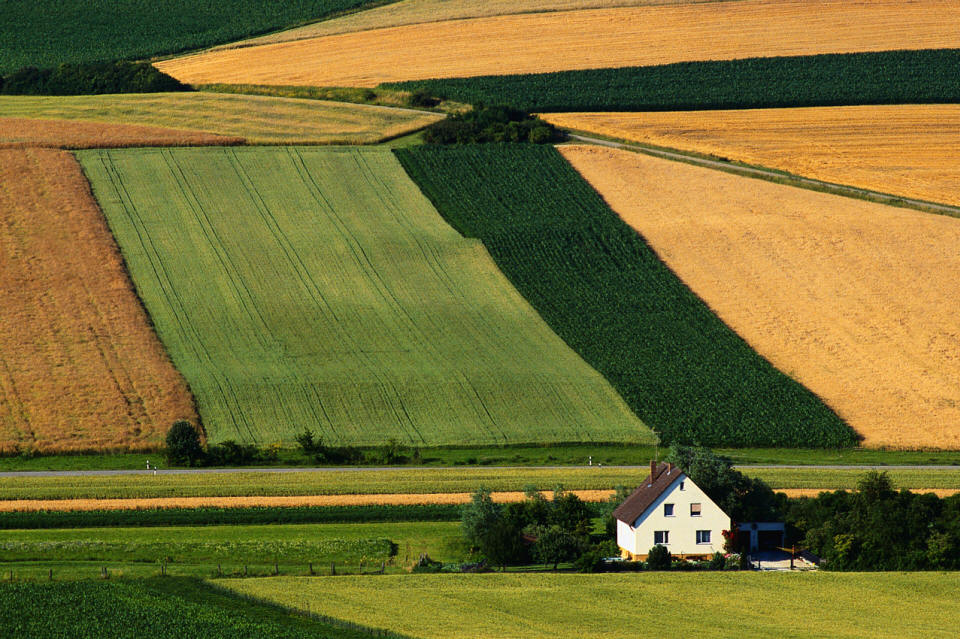 Farm Fields